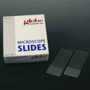 Microscope Slides, Glass, 25 x 75mm, 45° Beveled Edges, Clipped Corners, Blue Frosted, 72/Box, 20 Boxes/Case (10 Gross)