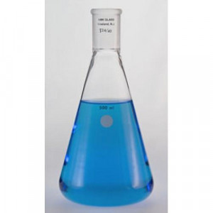 Erlenmeyer Flask, 25mL, 14/20 (ea)